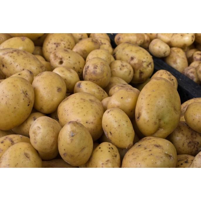 Patatas 1kg بطاطا