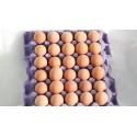 Huevos 30u